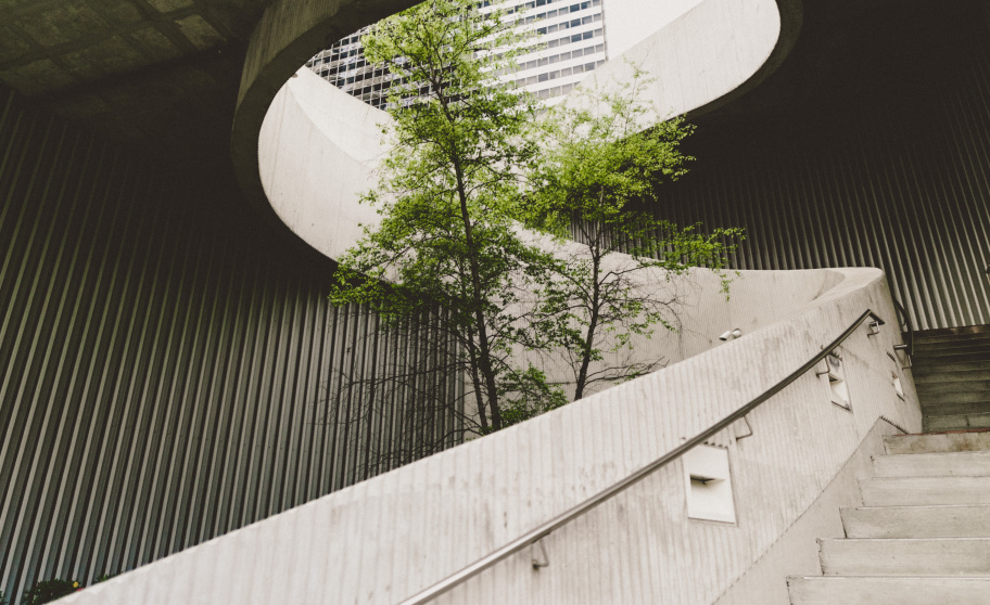 concrete and a tree